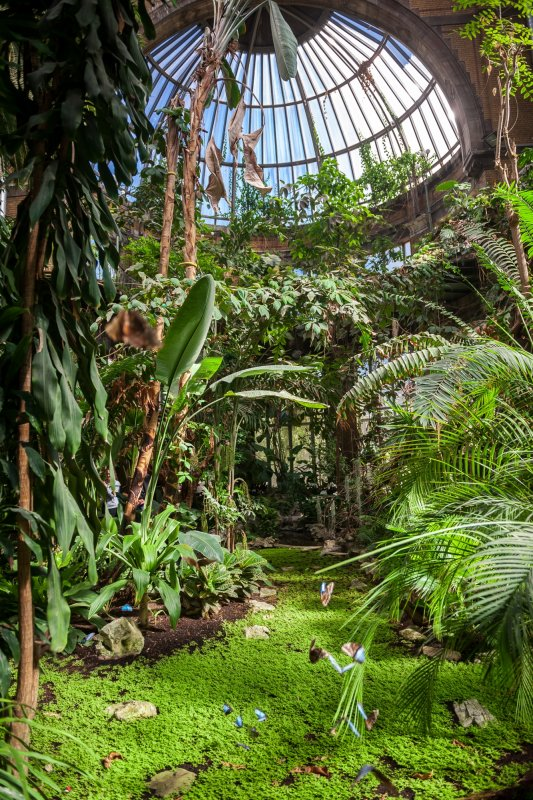 Winter Garden A Room With A Zoo Rooms Facilities A Room With A Zoo